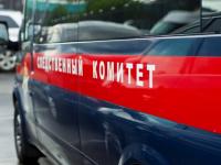 В Новгородской области подросток убил двоих пенсионеров