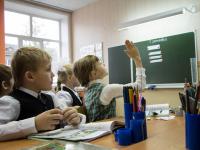 В Великом Новгороде на карантин из-за пневмонии уже ушли 13 школ