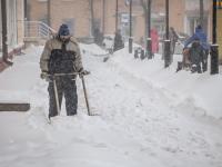 За сутки в Великом Новгороде выпала 4-дневная норма осадков